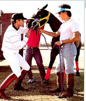 Memo Gracida bridles polo horse